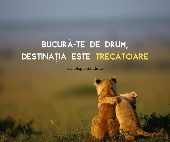 citate motivationale